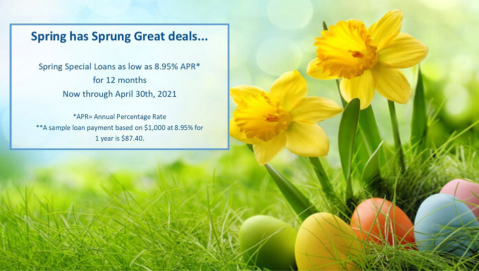 Spring special loans as low as 8.95% APR for 12 months. Avaialbe thru April 30th